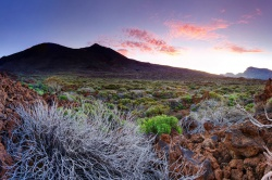 Teide National Park - Teneriffa